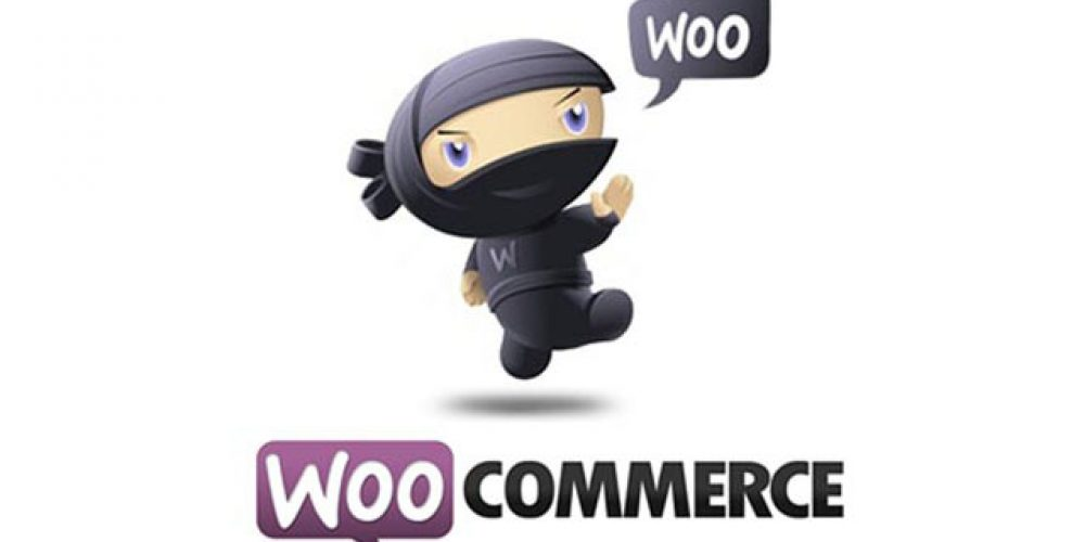 Nouvelle offre: WooCommerce